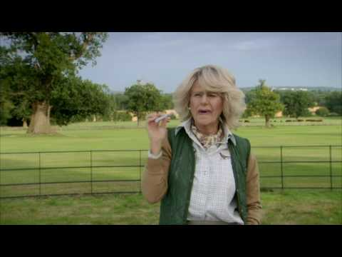 Tracey Ullman's Show: Trailer (HBO)