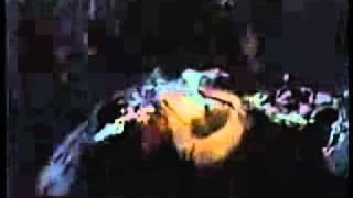 Centipede (Souterrains Mortels) (Gregory Gieras, EEUU, 2004) - Trailer