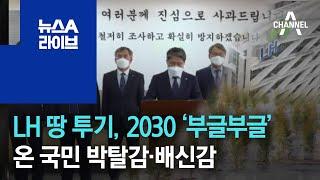 LH 땅 투기, 2030 '부글부글'…온 국민 박탈감·배신감 | 뉴스A 라이브