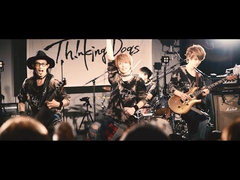 Thinking Dogs 『ハートビート』MUSIC VIDEO
