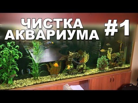 0 - Як чистити акваріум