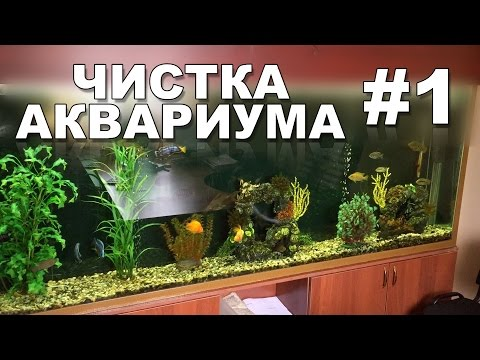Чистка аквариума своими руками #1