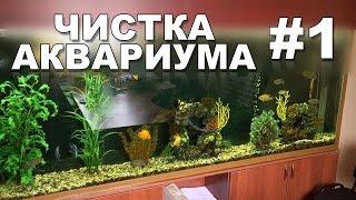 видео аквариум обслуживание