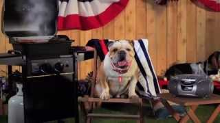 Tag The Bulldog's Backyard Bbq! Jones Advertising - Mattress Discounters