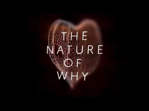 The Nature of Why - trailer