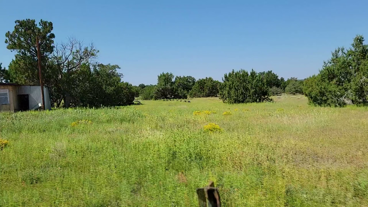 SOLD - 1.14 Acres - RV Ok, With Power! In Show Low, Apache County AZ.mp4