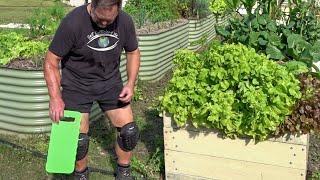 Dont Buy a Garden Kneeler Grow in a Raised Bed Garden Instead