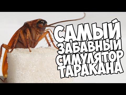 прикольные картинки таракан кс го