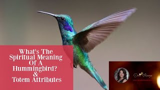 What's The Spiritual Meaning Of A Hummingbird? & Totem Attributes