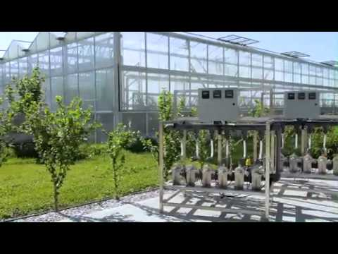 Greenhouse Automation Systems Worldwide Youtube
