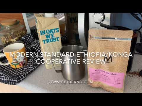 Modern Standard Ethiopiakonga Co Operative Review Get