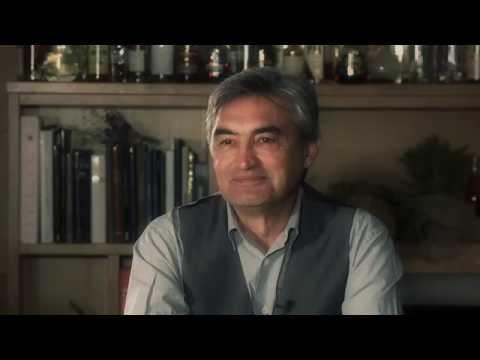 Jean-Michel Verleye, Consultant financier