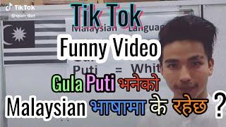 Funny Joke Musically Tik Tok  2019 # Gula र Puti भनेर Malayasian भाषा सिकाउंदै युवा ।।