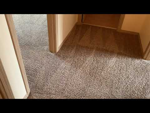Tons of Residue in this carpet | Steam Cleaning Nylon