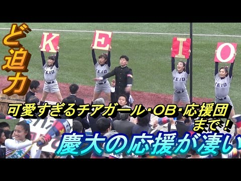 慶応大学の応援団が凄すぎる!チアガール華やか過ぎ!