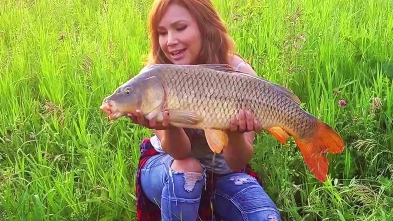 Channel cat and carp fishing youtube for Fishing youtube channels