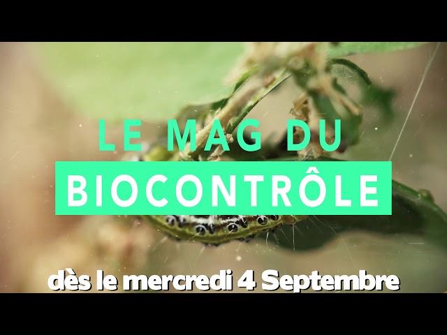 Le Mag du Biocontrôle : Un nouveau programme sur la chaîne Powerboost dès la rentrée !