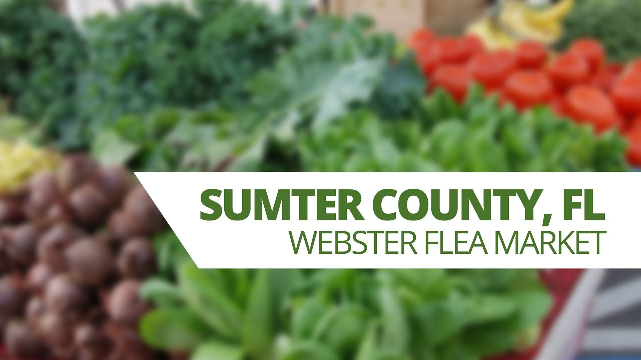 Sumter County Tourism Webster Flea Market