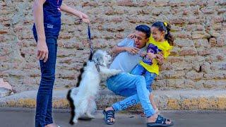 الفرق بين الولاد والبنات لما يشوفو كلب في الشارع | عبدو مانا
