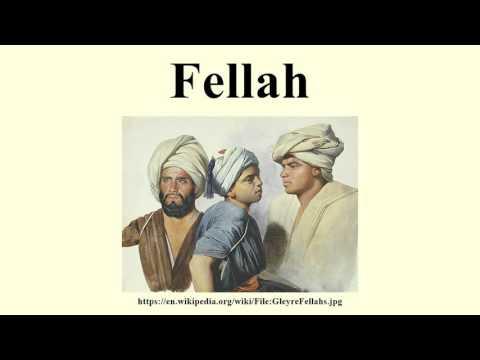 Fellah