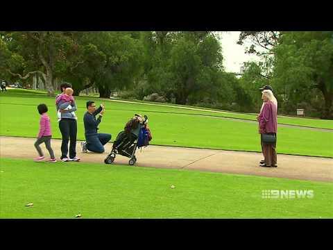 Tourism Slump | 9 News Perth