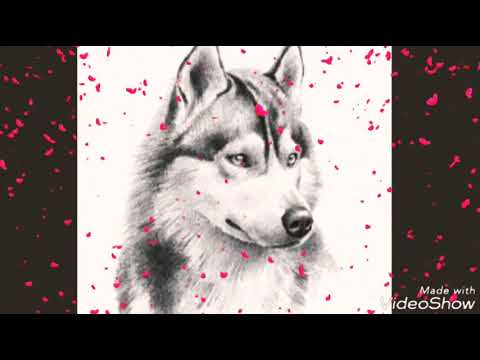dibujos buenos - YouTube