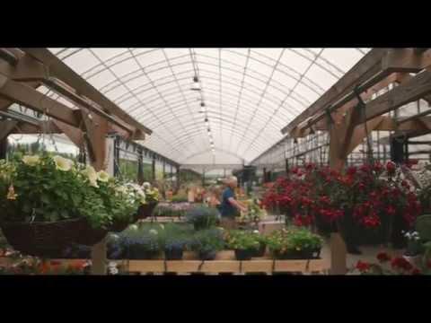 Wyevale Garden Centres (2015)