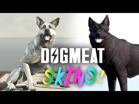 Dogmeat Skins! Plus, New Dogs & Pip-Boy Skins - Fallout 4 Creation Club Update