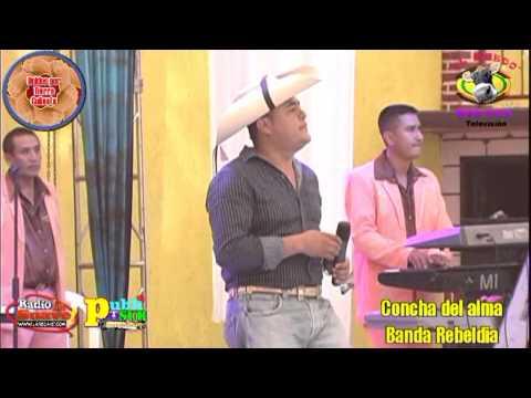 Concha del Alma Banda Rebeldia
