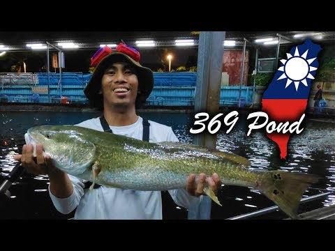 Pay Pond Fishing In Taiwan For Big Fish