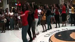 UCF Delta Sigma Theta