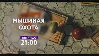 Мышиная охота на ТНТ4!