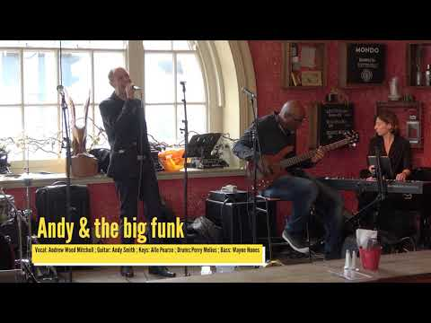 Andy and the Big Funk live performance at Celebration of Africa 2017