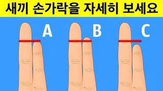 손가락 모양으로 알아보는 성격 및 건강 위험