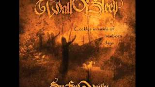 Wall of Sleep - Sun Faced Apostles (lyrics) S.F.A. 2