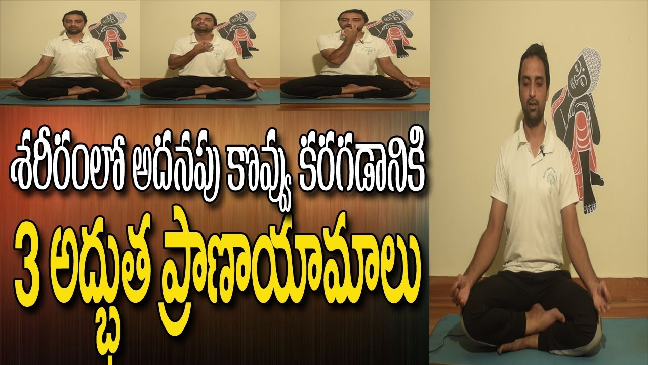 Pranayam For Weight Loss Yoga For Weight Loss In Telugu Breathing Exercises Yoga In Telugu Youtube