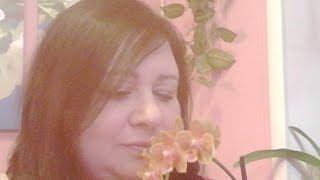 Прямой Эфир ♥️ Поговорим об орхидейках и не только 😘