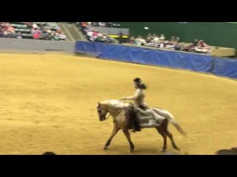 Indian Outlaw Reining Freestyle - Angie Reichert