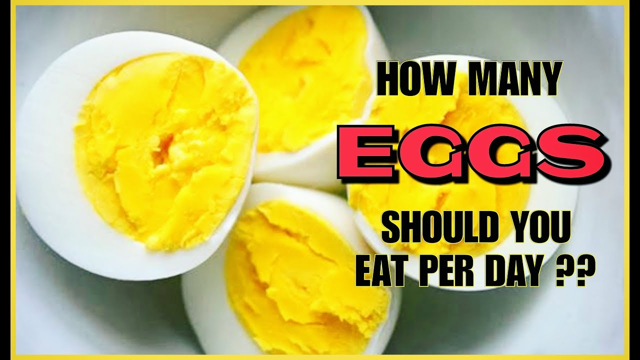 how many eggs should you eat per day?? | for men and women | info by