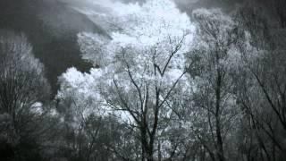 Czarnobog - Winds of Stribog