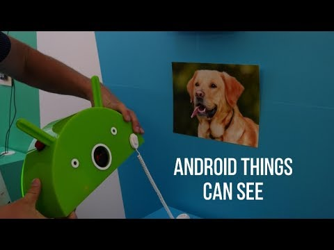 Android Things can serve up M&M candies, and recognize dogs