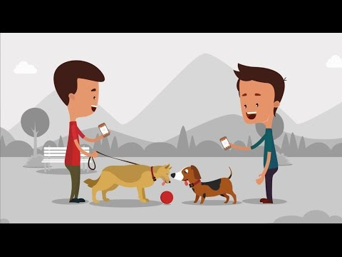 PitPat - Dog Care Intelligence Platform