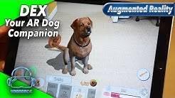 Dex: Your AR Dog Companion - Ein virtueller Hund in unserem Wohnzimmer [Augmented Reality]