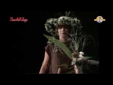 Louis Neefs - Margrietje De Rozen Zullen Bloeien