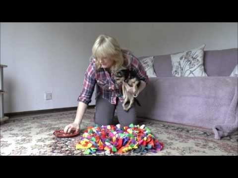 dog-training--enrichment-using-natural-instinct-treats-and-a-snufflemat