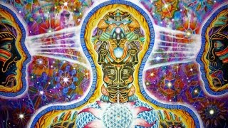 The DMT/Ayahuasca Journey Explained → Graham Hancock ☮ David Icke