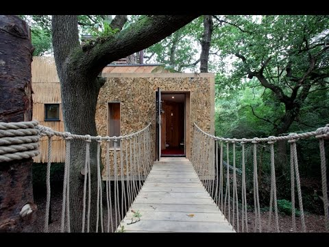 Inside The Luxury $200,000 Treehouse