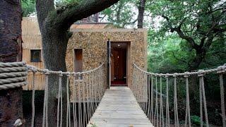 Inside The Luxury 200,000 Treehouse