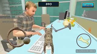 Кот в офисе!!! Берегись