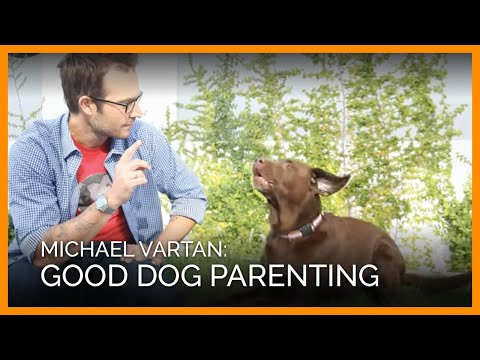 Michael Vartan Good Dog Parenting